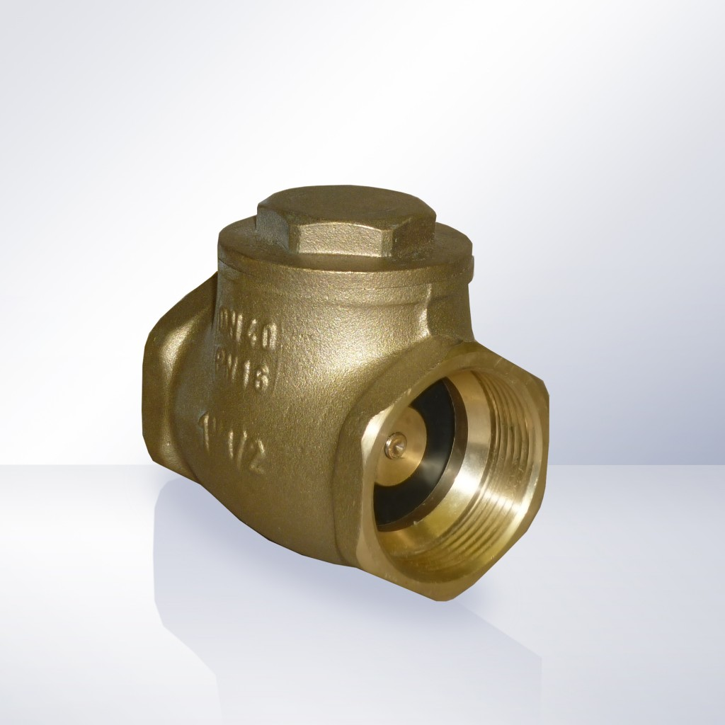 Swing Check Non-Return Valve